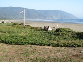 c-beach-s-from-motel.jpg